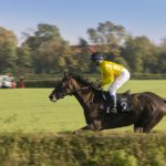How to Become a Professional Jockey?